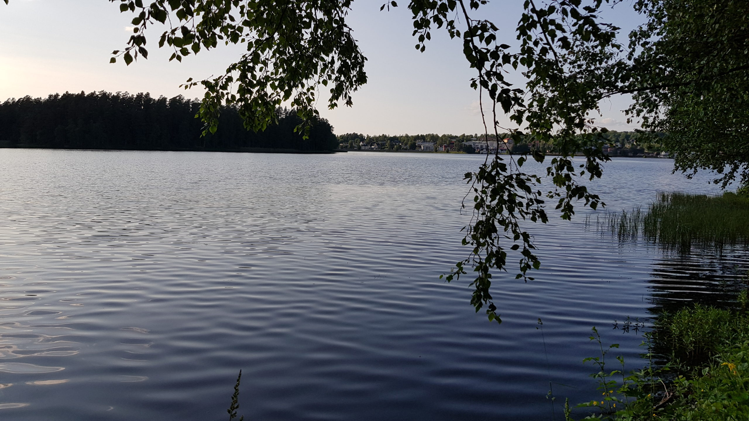 Utsikt över Mullsjön under kvällspromenad i juni.
